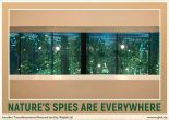 Spies of nature